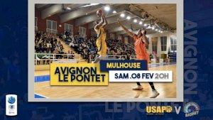 Avignon - Le Pontet / Mulhouse ( NM1 - Séniors )