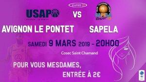 Avignon-Le Pontet / Sapela basket ( NM2 - Séniors )